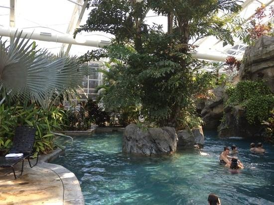Grand Cascades Lodge : biosphere pool
