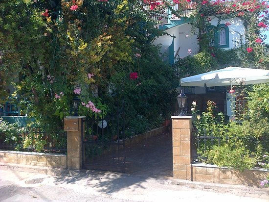 Villa Contessa: George's beautiful garden and patio.