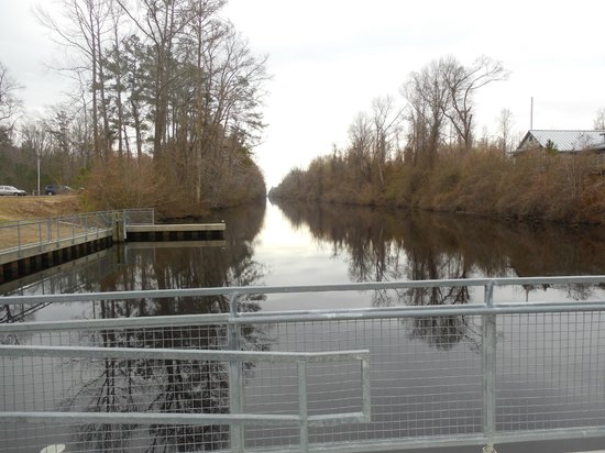 Dismal Swamp State Park: The canal