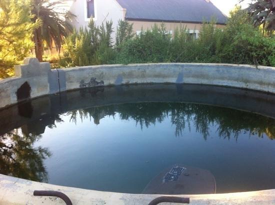 Bella de Karoo: The swimming pool