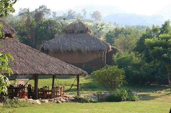 Naturacamp