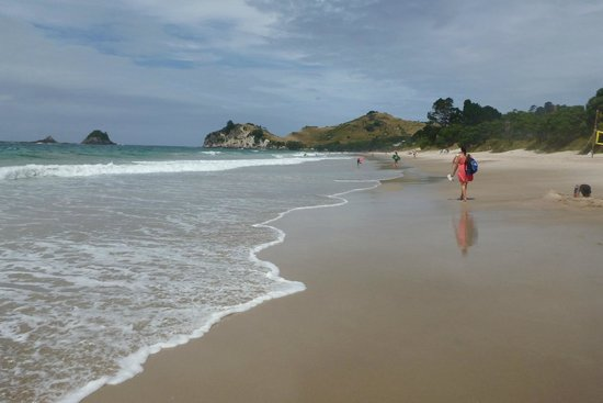 Hahei Holiday Resort: Stroll along the beach to the shop