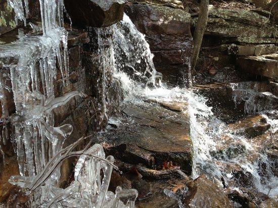 Dardanelle, Арканзас: Iced Gum Spring Falls