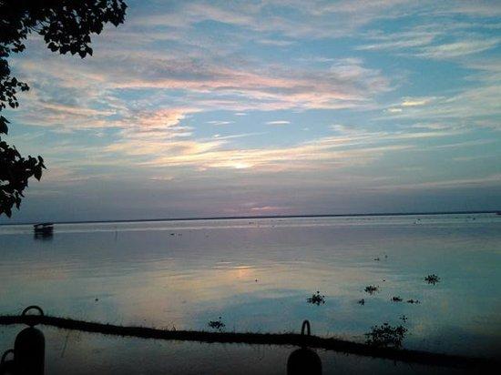 The Zuri Kumarakom: vembanand lake view