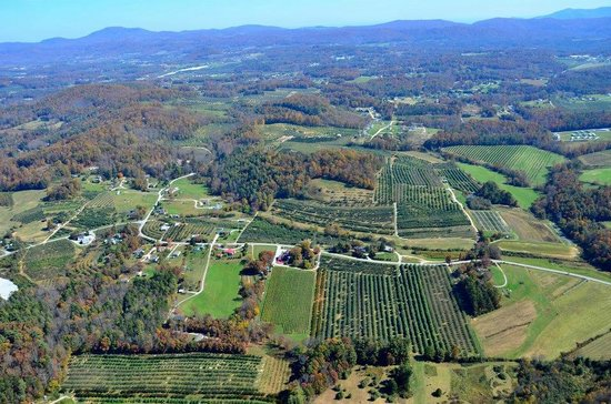 Saint Paul Mountain Vineyards: Aerial view of vineyard and surrounding area.