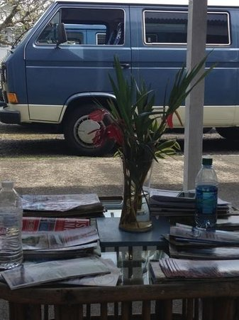 Arnott's Lodge: vw camping and fresh flowers :)