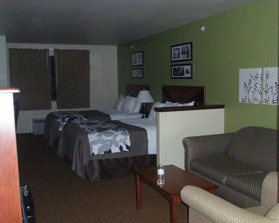 Sleep Inn & Suites: Two beds, couch, chair, lots of pillows