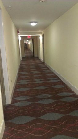 Stadium Inn: gross hallways
