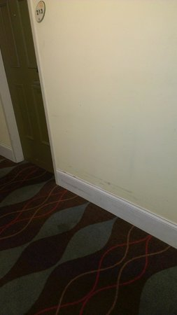 Stadium Inn : wall stains in room