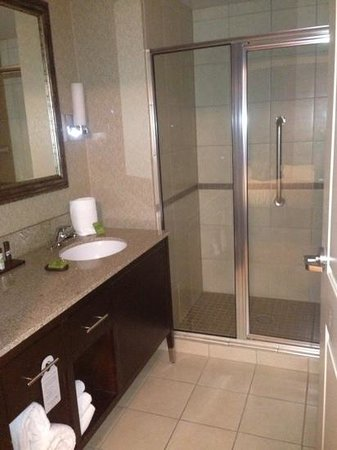 Embassy Suites by Hilton Birmingham-Hoover: bath