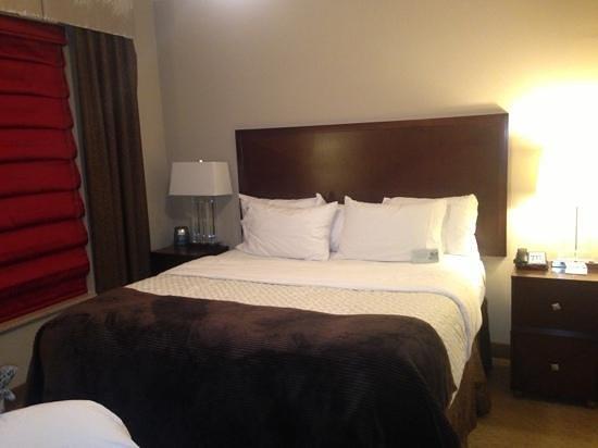 Embassy Suites by Hilton Birmingham-Hoover: king