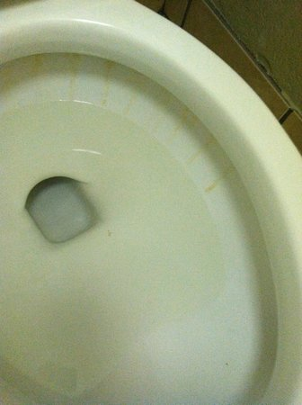 Clarion Hotel & Conference Center: Flity Toilet