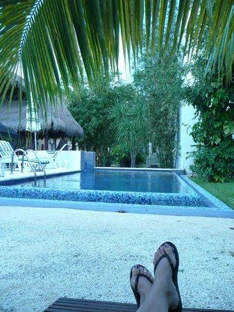 Villas El Encanto: POOL