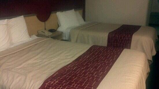 Red Roof Inn Greensboro Airport: Beds