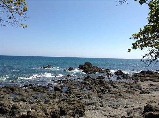 Hacienda Guachipelin: Costa Rica PURA VIDA!