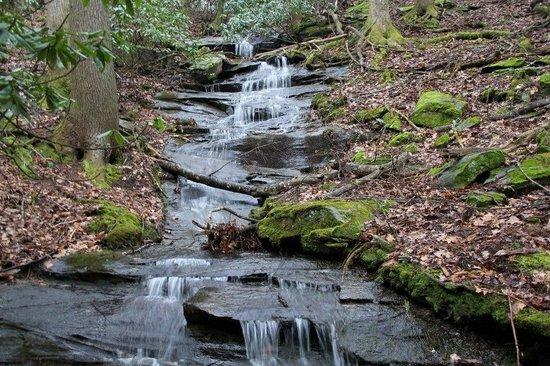 Bear Rock Ridge Bed & Breakfast: Waterfall just off the property
