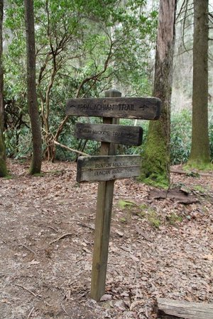 Bear Rock Ridge Bed & Breakfast: Crossroads on the Appalachian and Benton MacKaye Trails