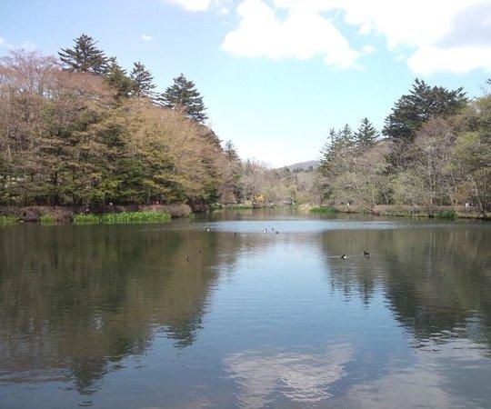 Kumoba Pond: 入り口