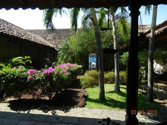 Hotel Patio del Malinche: View of the front patio with Malinche tree