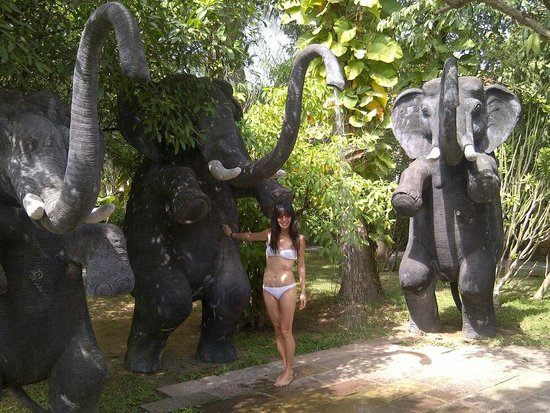 Royal Angkor Resort & Spa: Having fun with the elephants by the poolside.