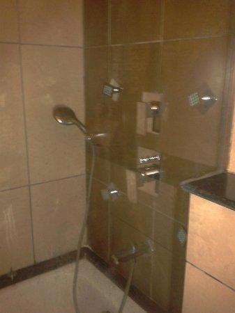 รีสอร์ท เดอ โคราเกา: Shower Panel