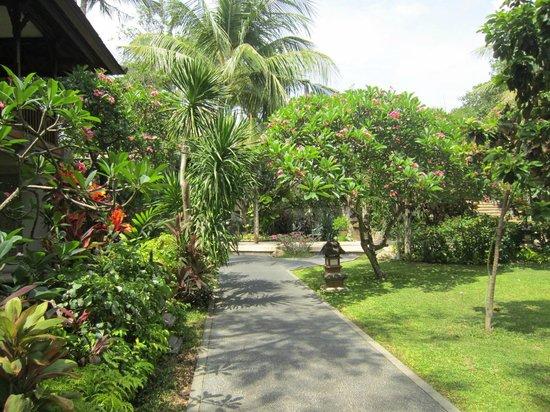 Padma Resort Legian: padoma