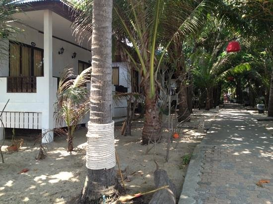Marina Beach Resort: bungalow's, trail to lobby