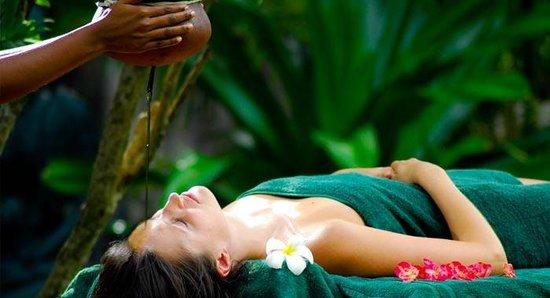 Ayurveda the holistic treatment