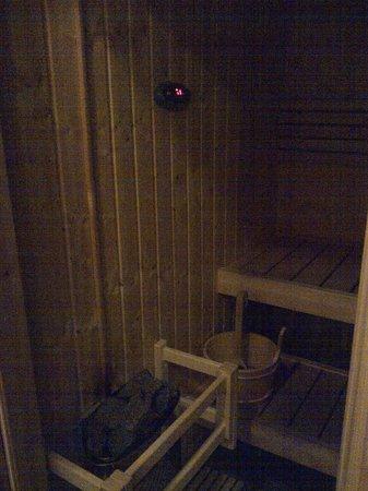Fortune Royal Hotel: sauna