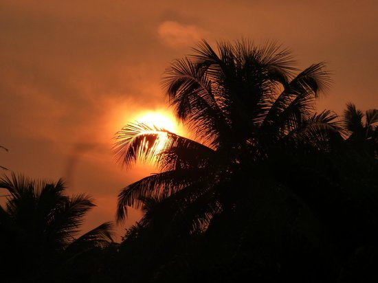 Kumarakom Lake Resort : coucher de soleil