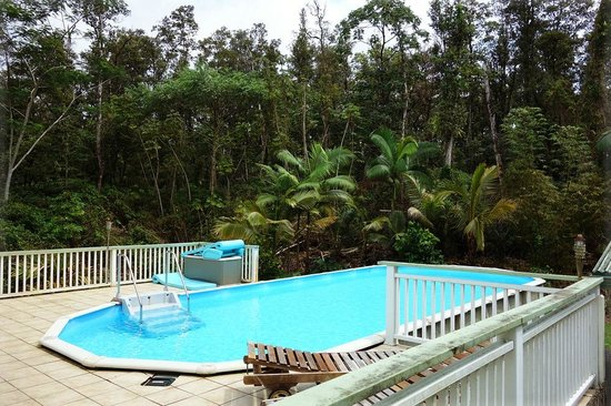The Ohia House: The pool behind the house