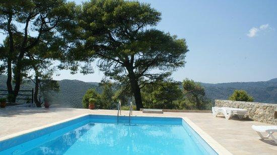 Villa Evelyn: The pool
