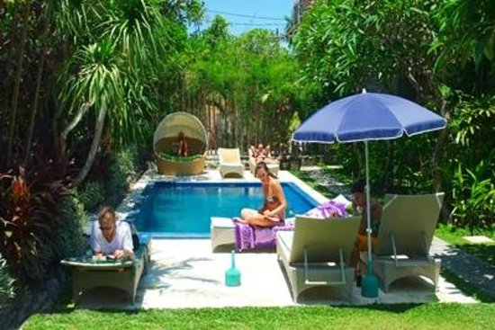 Cafe Locca Homestay: garden with pool