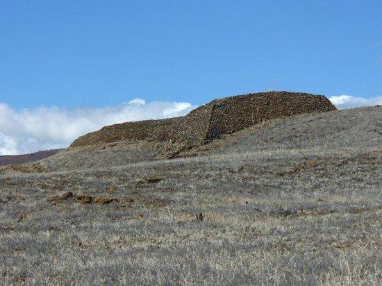 Pu'ukohola Heiau: 巨大な石垣