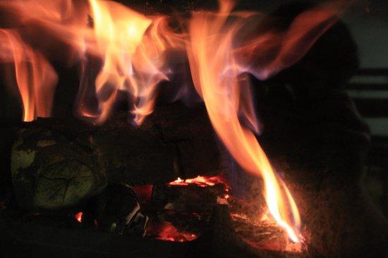 Pirin Residence: Fireplace