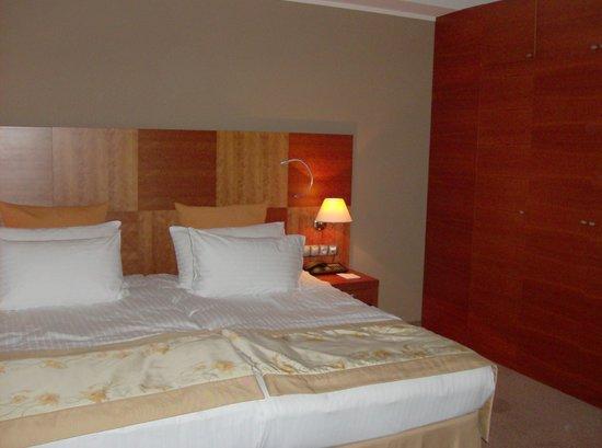 布拉格皇冠假日酒店照片