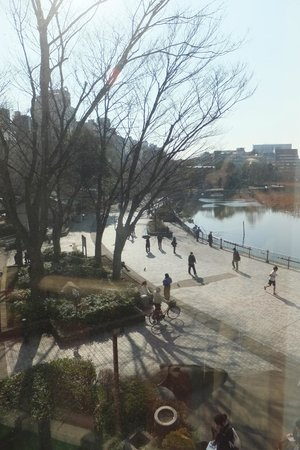 Shitamachi Museum: the Shinobazu pond as view from the 2nd storey.