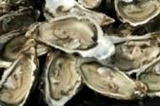Viking Lobster Company: Oyster's available raw, casino style or rockafellar-spinach,bacon and parmesan cheese