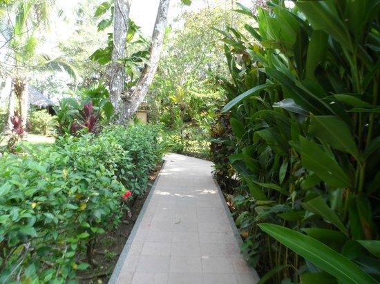 DoceLunas Hotel, Restaurant & Spa: walkway