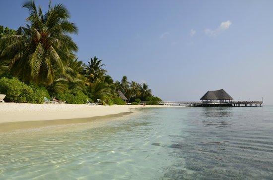 Bandos Maldives: la plage pricipale et le sundowner bar au fond