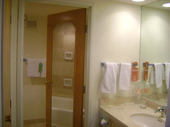 Fiesta Inn Centro Historico: Área baño