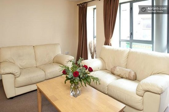 Dublin 1 Apartments: The two beautiful leather couches in apartment one Mellor Court.