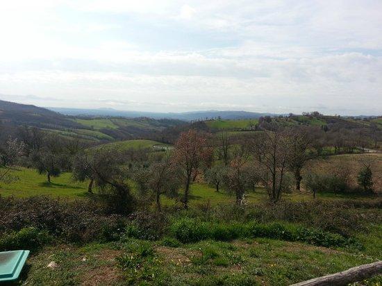 Agriturismo La Meria: VEDUTA DALLA PISCINA