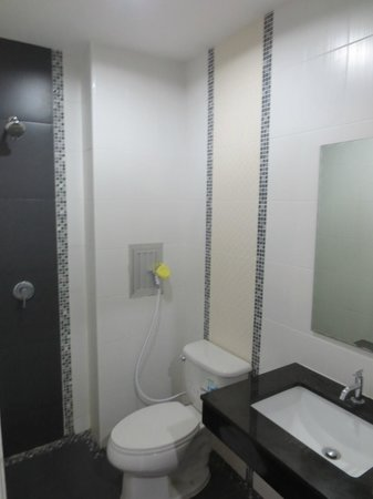 DDC House: Great Shower (hot/cold), clean and new