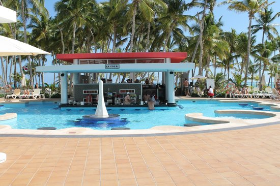 Hotel Riu Palace Bavaro: Swim up Bar