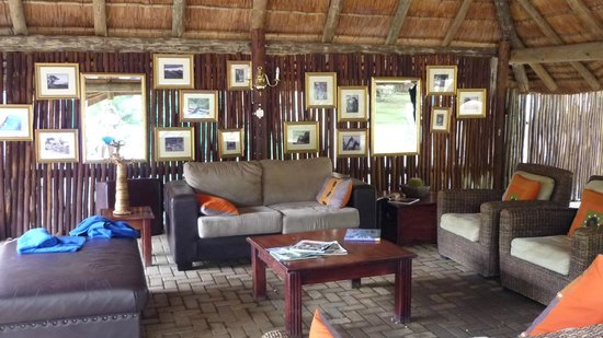 Shiduli Private Game Lodge: outside area near the pool