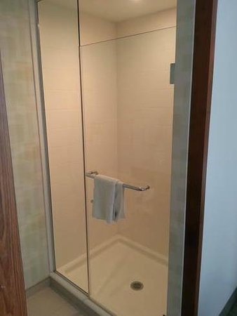 SpringHill Suites Pittsburgh Bakery Square: Shower in 2nd Bathroom