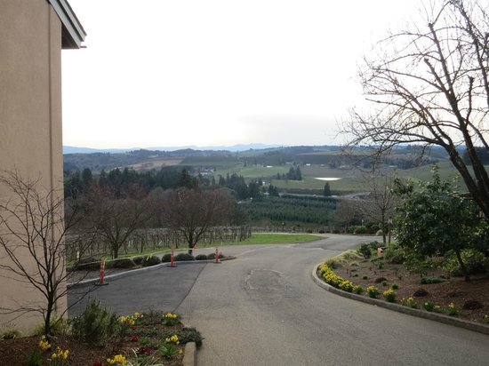 Willamette Valley Vineyards: Looking west from the tasting room