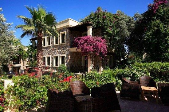 Hotel Zeytinada: Building