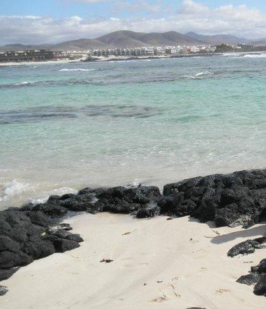 Lagunas y Playa de El Cotillo: Laguna